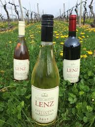 Long Island Wine Tours- LI Wine Tastings