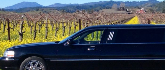 Limo Services - LI Wine Tastings