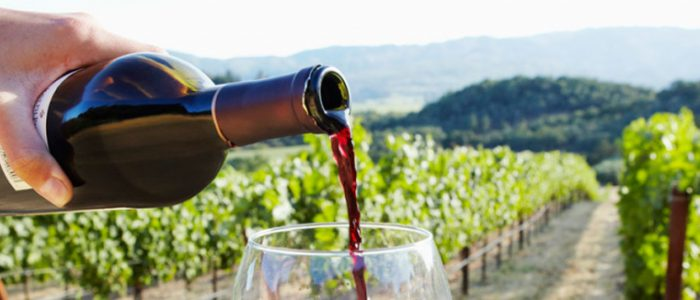 Long Island Wine Tours - LI Wine Tastings