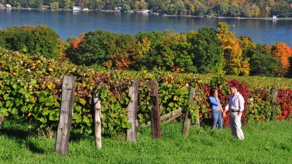 The #1 Long Island Wine Tours Provider - LI Wine Tastings